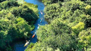 Remar pelo Pantanal Sul-Mato-Grossense