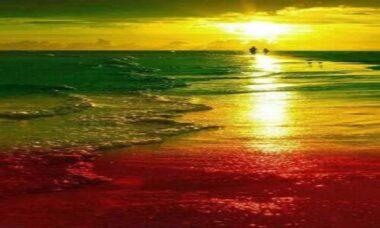 reggae polinésio