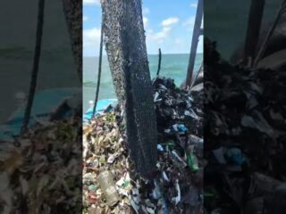 mar de lixo em Santos
