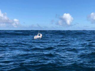 solo kayak to hawaii valentine